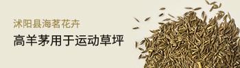 沭阳县海茗花卉
