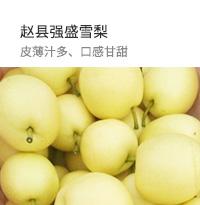 赵县强盛雪梨,皮薄汁多、口感甘甜